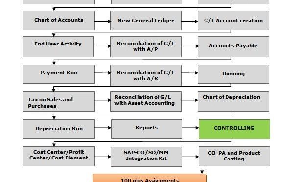 SAP-FICO-Roadmap-pic
