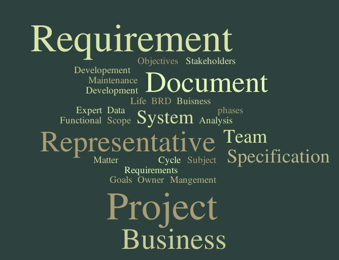 Why Business Requirement Document is important in Successful implementation? - Zarantech