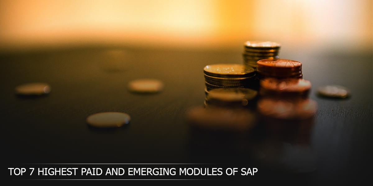 Top 7 Highest Paid and Emerging SAP Modules in 2017