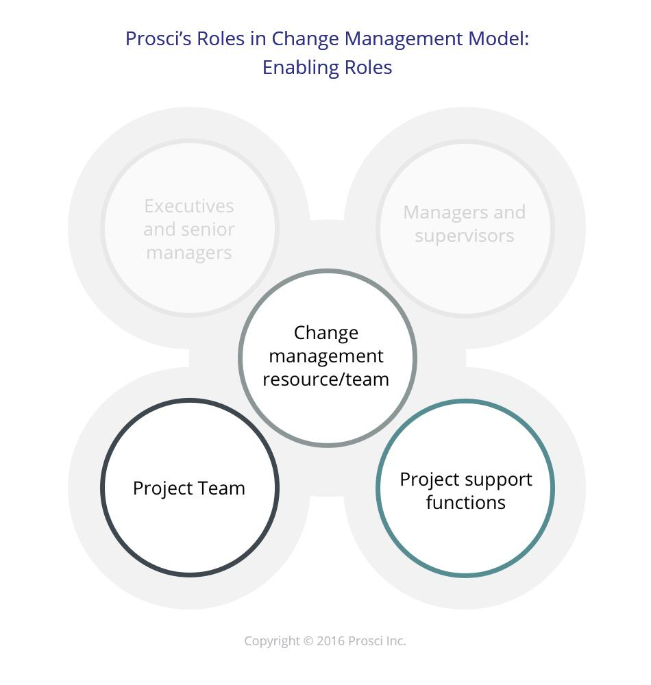 Five Key Project Manager Roles required for Successful