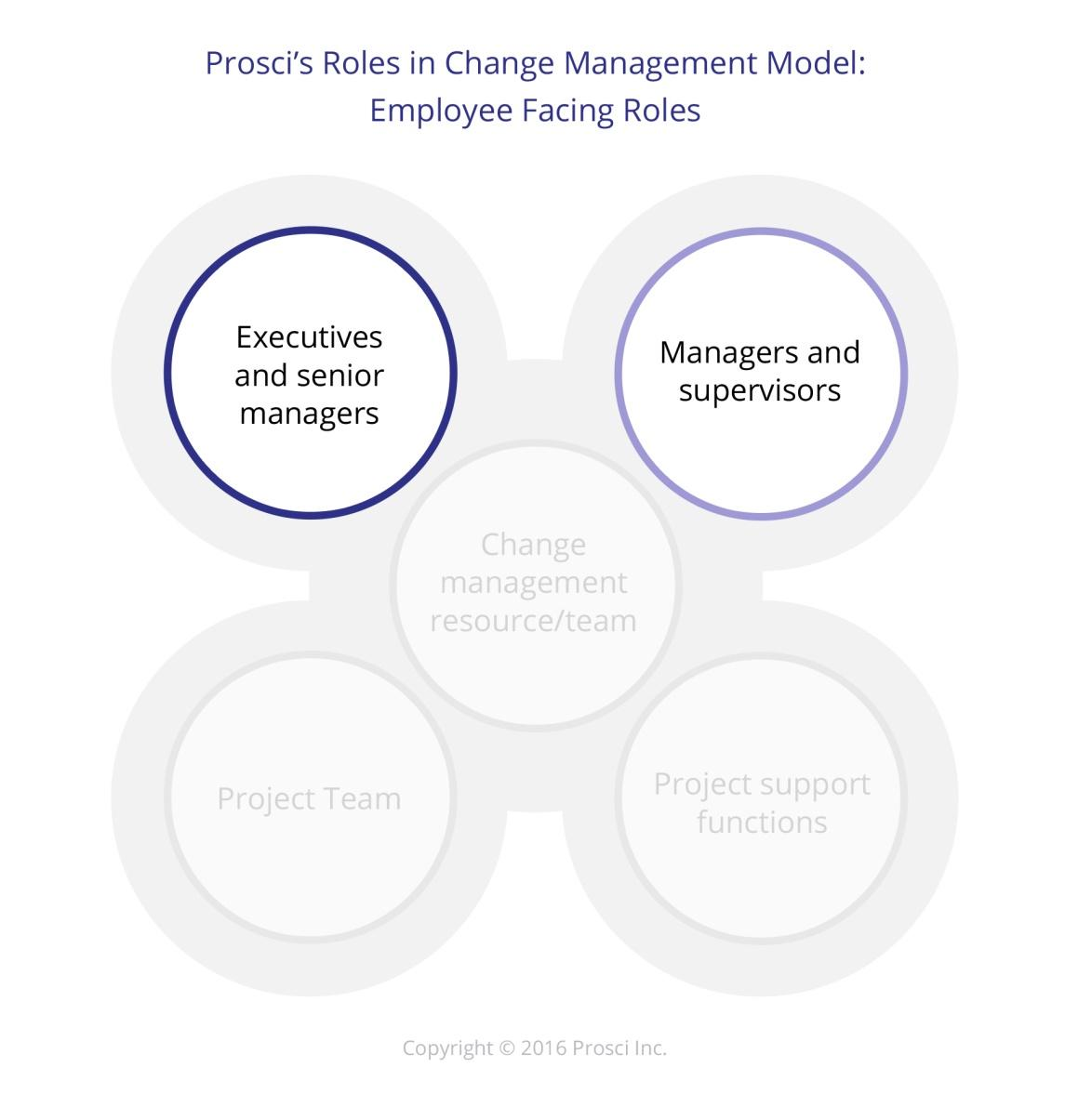 Five key project manager roles required for successful transition in five key project manager roles required for successful transition in an organization 1betcityfo Images