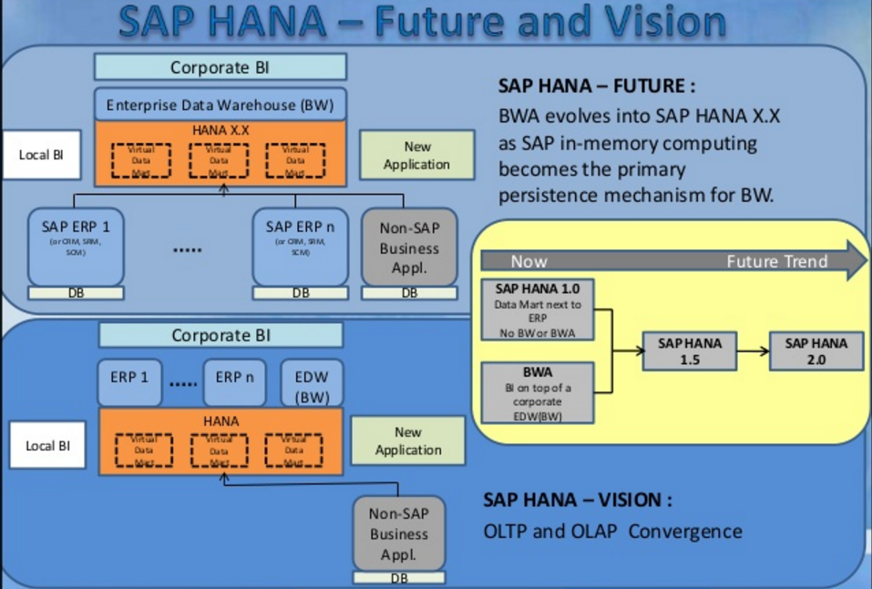 Sap Hana - The Business Future