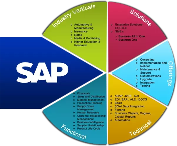 which is the best SAP module to learn