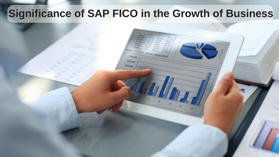 Significance of SAP FICO in the Growth of Business