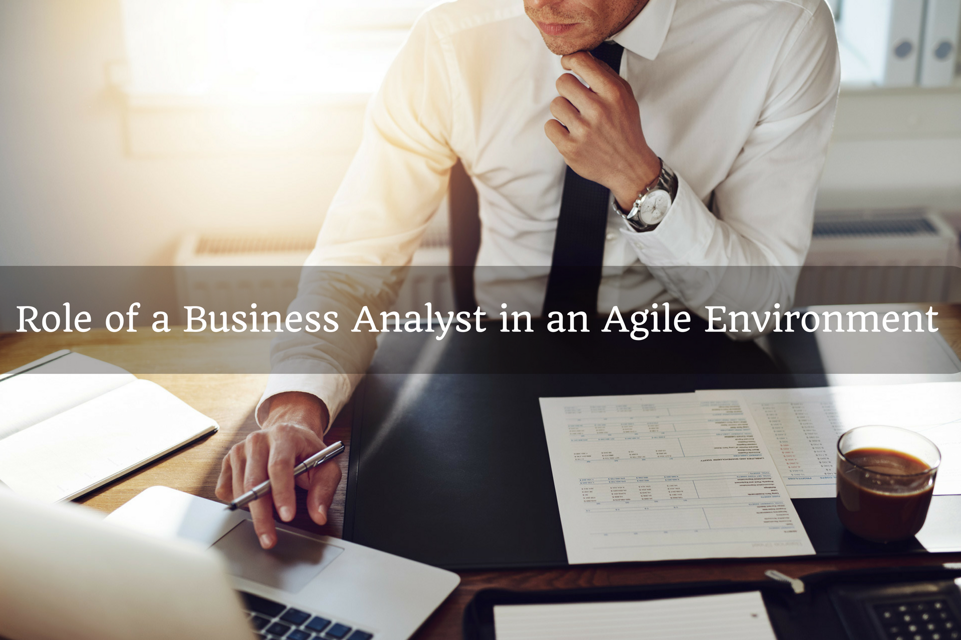role of a business analyst in an agile environment