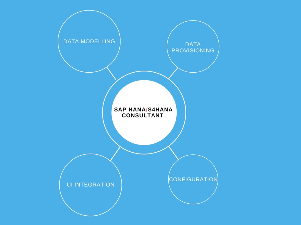 Top Challenges Faced by Every SAP HANA Consultant - Zarantech