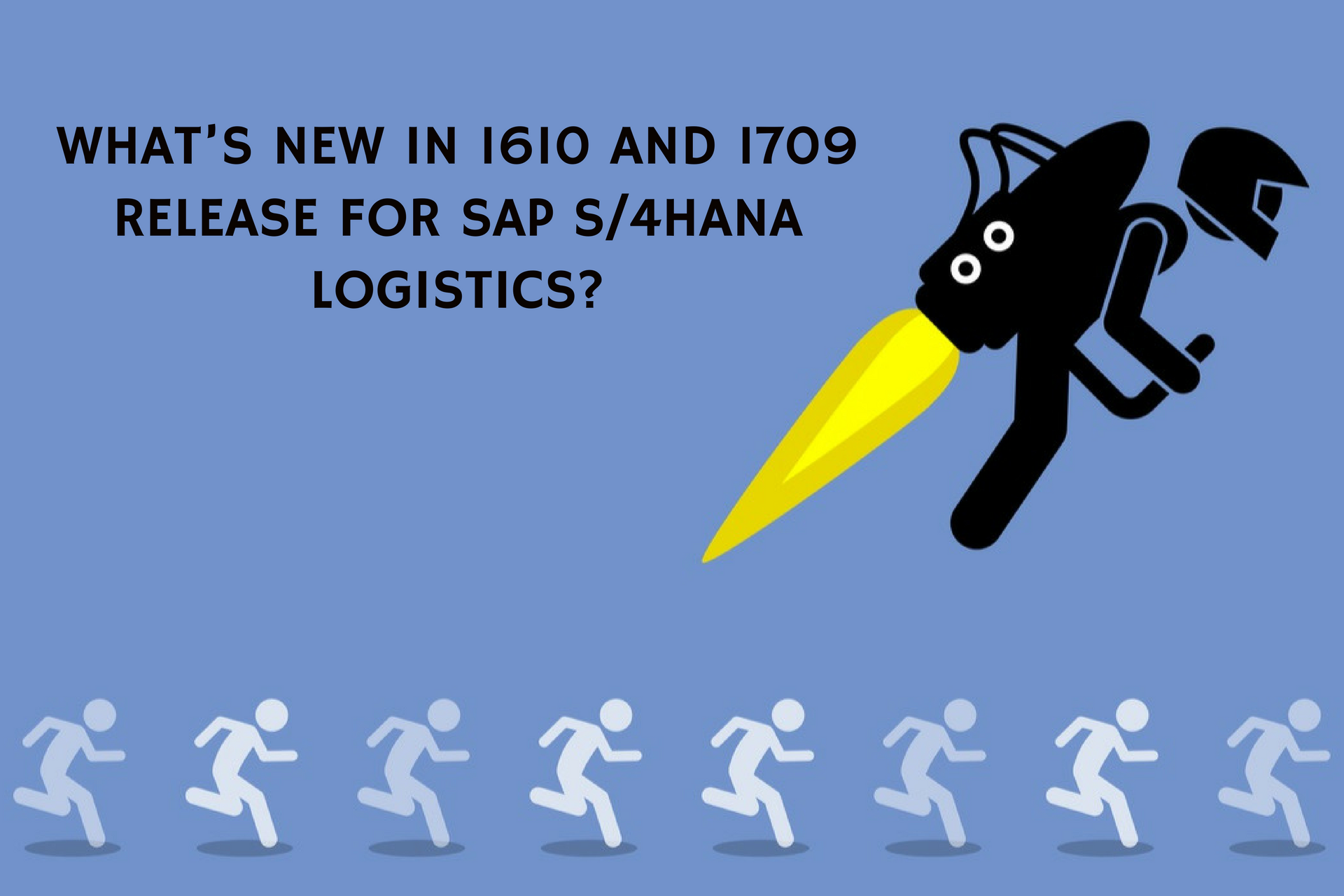 What's New in 1610 and 1709 Release for SAP S/4HANA Logistics