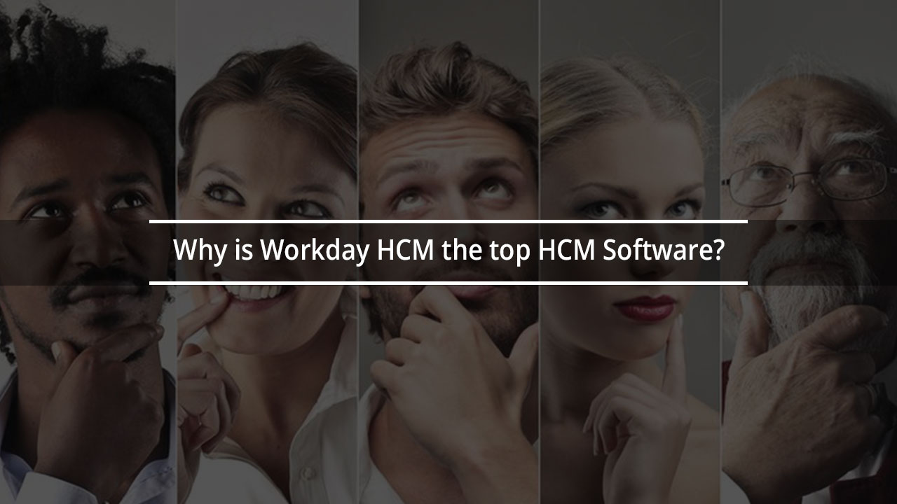 Why is Workday HCM the Top HCM Software? - Zarantech