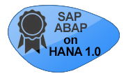 SAP ABAP on HANA 1.0