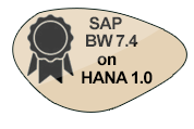 SAP BW 7.4 on HANA 1.0