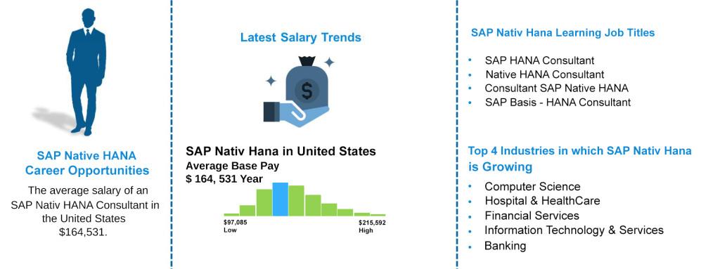 Job Outlooks - SAP Nativ Hana