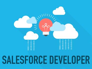 Salesforce Developer & Admin Certification Training