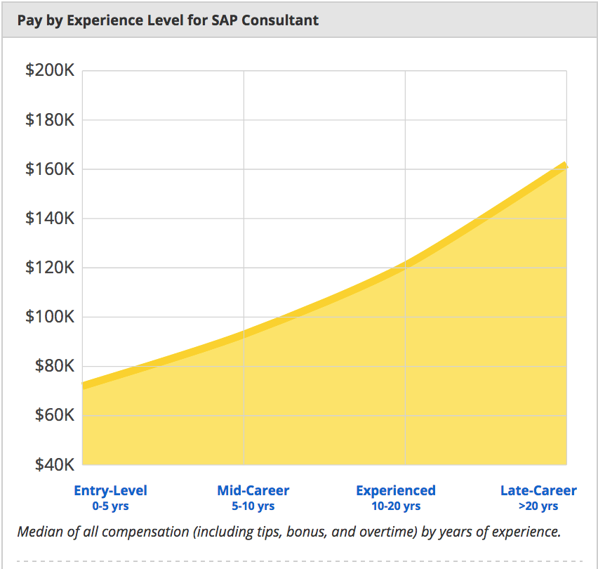 pay-experience-level-for-sap-consultant